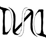 dual/dual